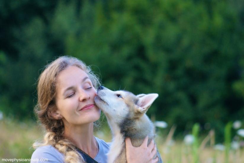 Physiothérapie pour animaux